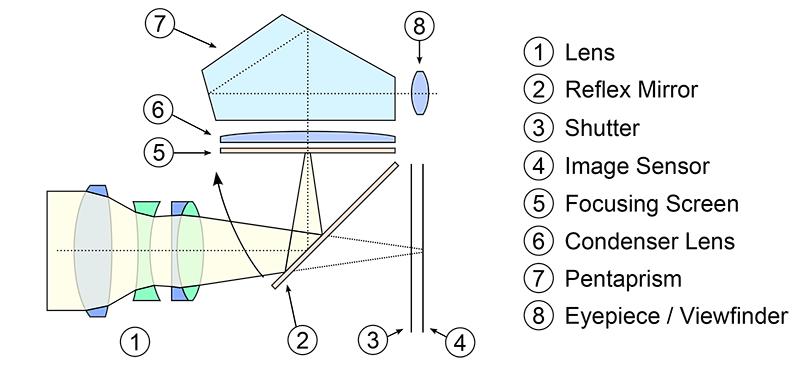 DSLR-Cross-Section.png