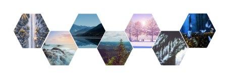 Hexagonal Pictures